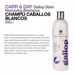CARR & DAY CHAMPÚ CABALLOS...