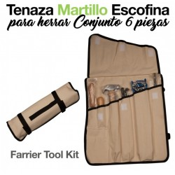 TENAZA MARTILLO ESCOFINA...