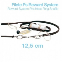 FILETE PS REWARD SYSTEM RW21904N