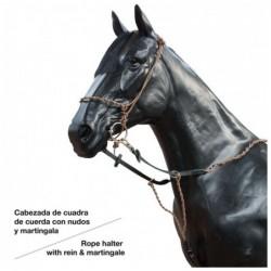 CABEZADA CUERDA CON MARTINGALA 497048P