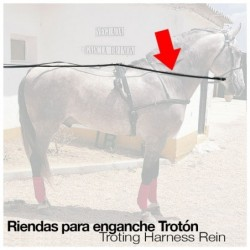 ENGANCHE RIENDAS TROTÓN NEGRO