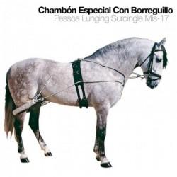 CHAMBÓN ESPECIAL CON BORREGUILLO MIS-17