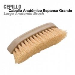 CEPILLO CABALLO ANATÓMICO ESPANSO GRANDE
