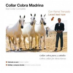 COLLAR COBRA MADRINA CON...